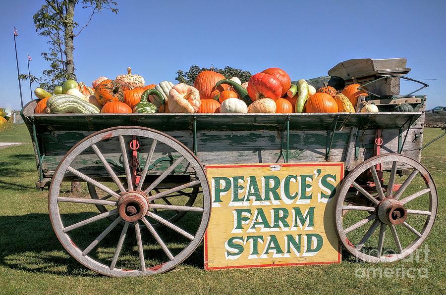 Pearce S Farm Cart Photograph By Jane Butera Borgardt