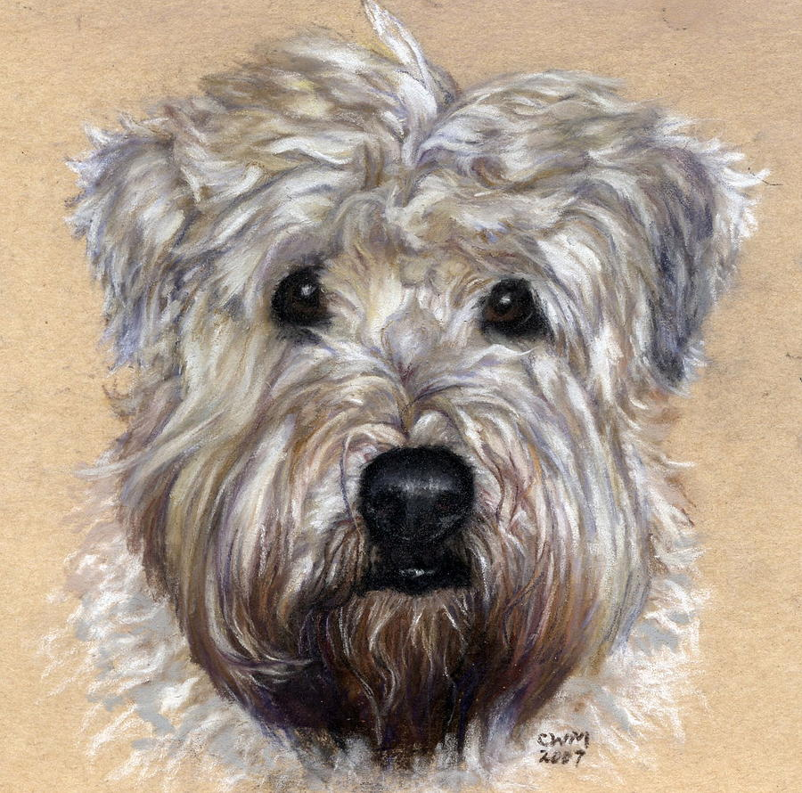 Shaggy Painting - Pearl by Candy Maley