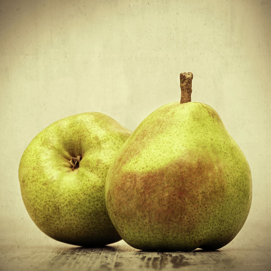 Pears Photograph - Pears by Wim Lanclus