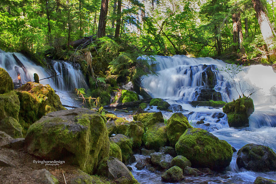 Waterfall Photograph - Pearsony Falls by John Heywood