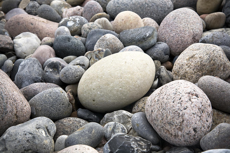Pebbles Photograph - Pebbles by Frank Tschakert
