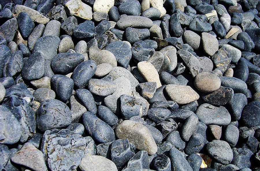 Pebbles Photograph by Jacqueline Doulis