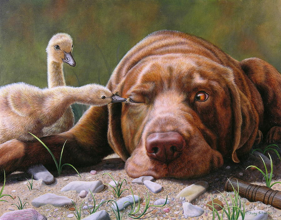 Labrador Painting - Pecking Order by Judy Schrader