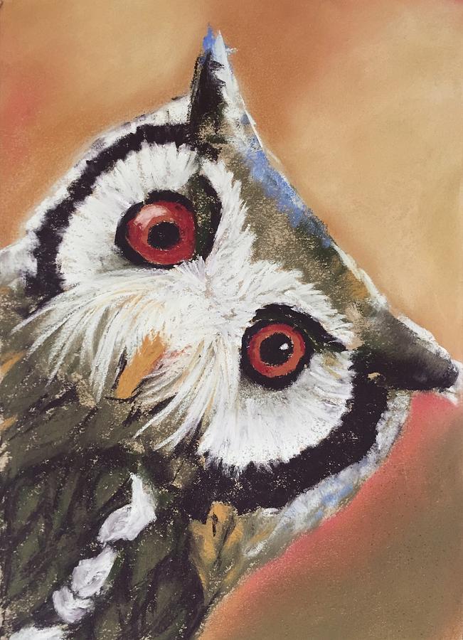 Owl Drawing - Peekaboo Owl by Cristel Mol-Dellepoort
