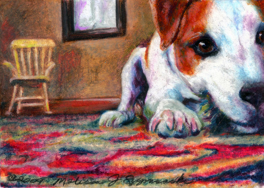 Dog Drawing - Peeking Piper by Melissa J Szymanski