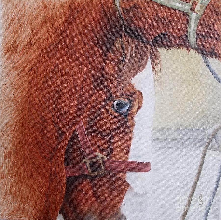 Horse Painting - Peeping Paint Glin Fair by Pauline Sharp