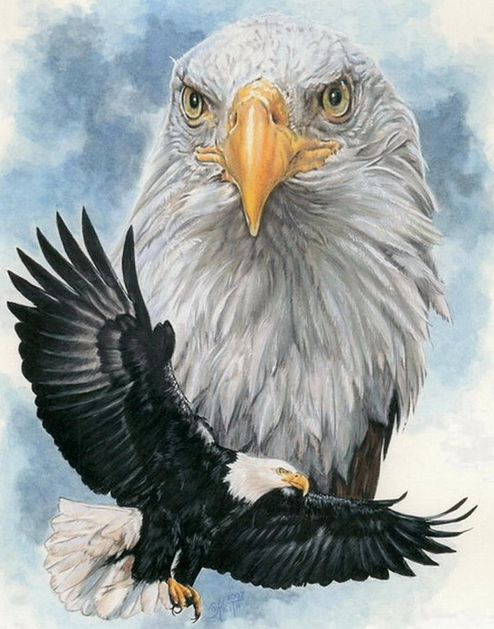 Bald Eagle Mixed Media - Peerless by Barbara Keith