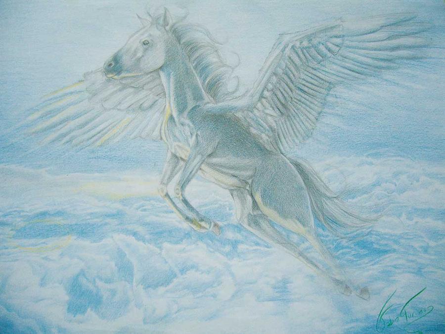 Coloured Drawing - Pegasus by Fabio Turini