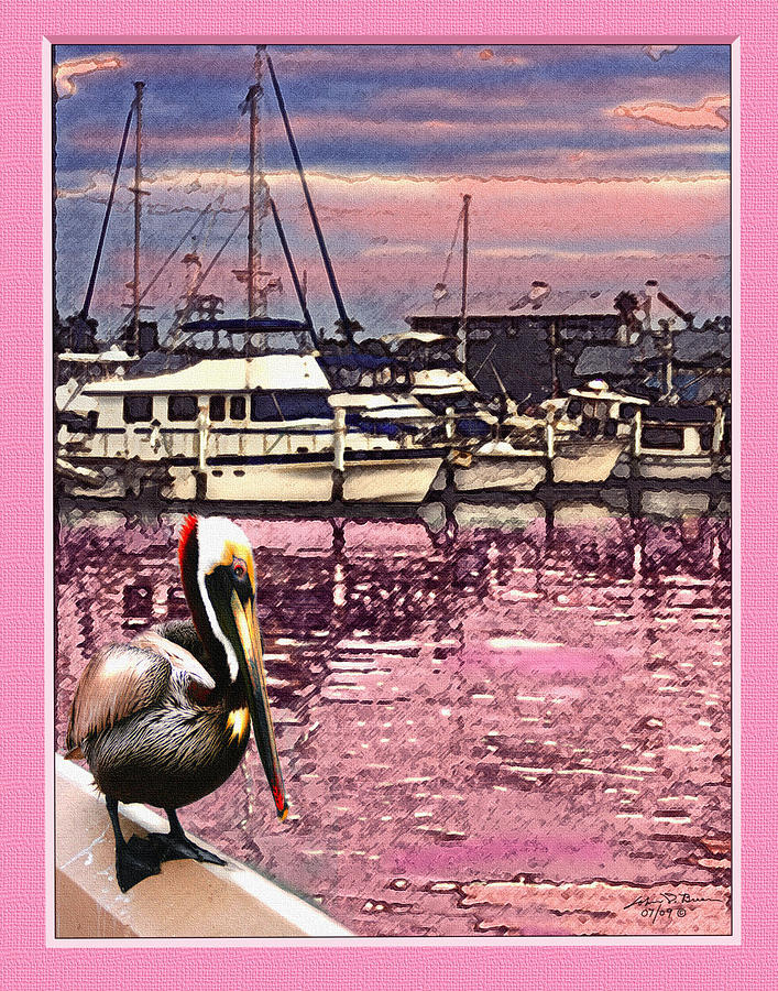 Pelican At Sunset 1 Painting by John Breen