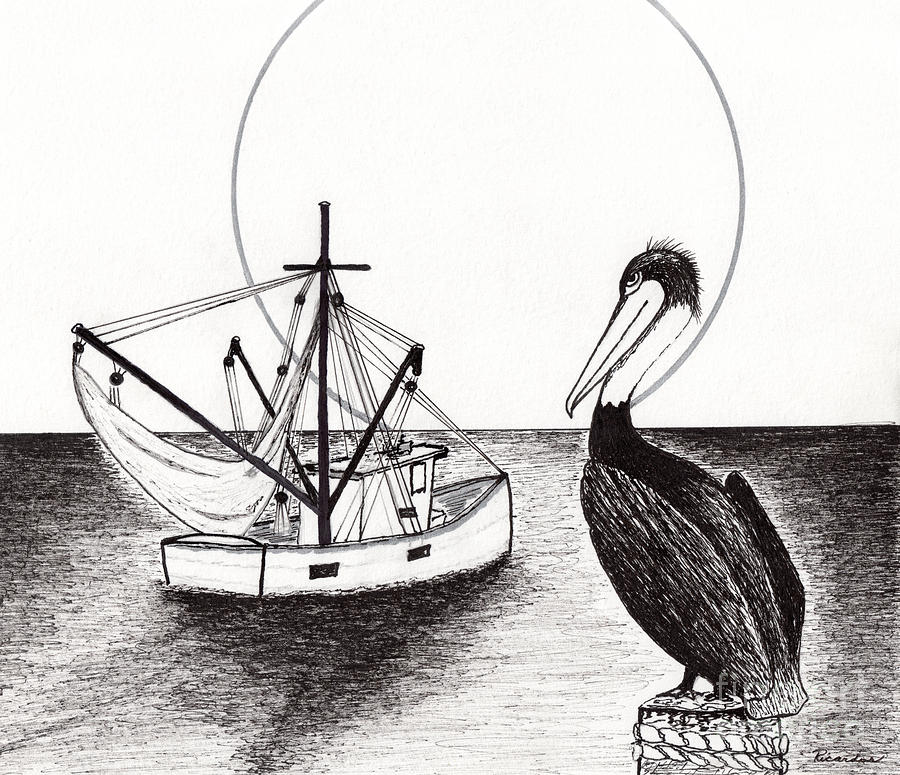 Pelican Drawing - Pelican Fishing Paradise C1 by Ricardos Creations
