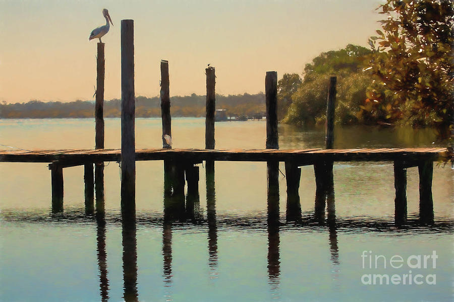 Artwork Photograph - Pelican On Post by Sheila Smart Fine Art Photography