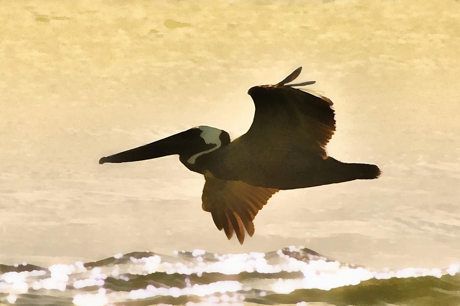 Birds Photograph - Pelican Patrol by Jim Proctor