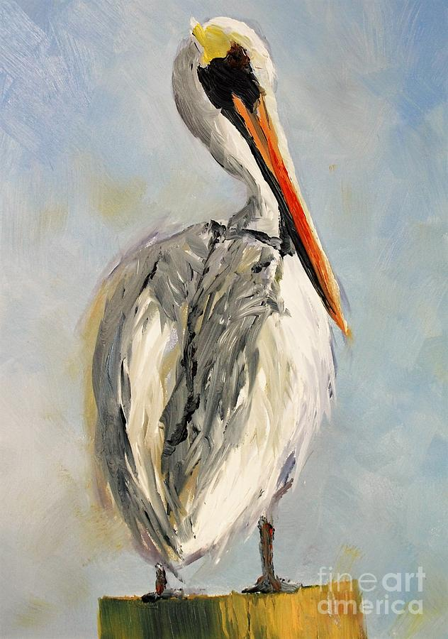 Pelican Portrait by Keith Wilkie