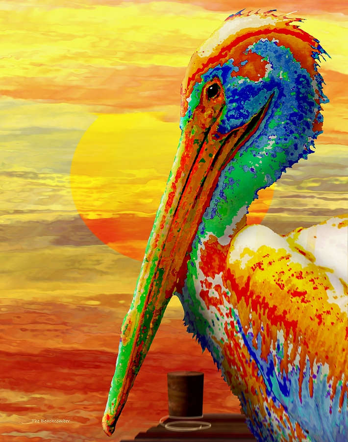 Pelican Sunset by Wally Boggus