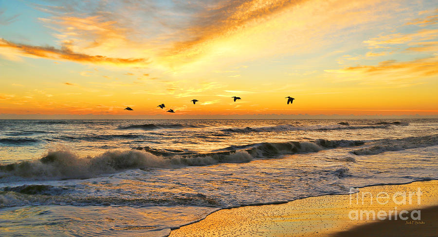 Pelicans Photograph - Pelicans At Sunrise  Signed 4651b 2  by Jack Schultz