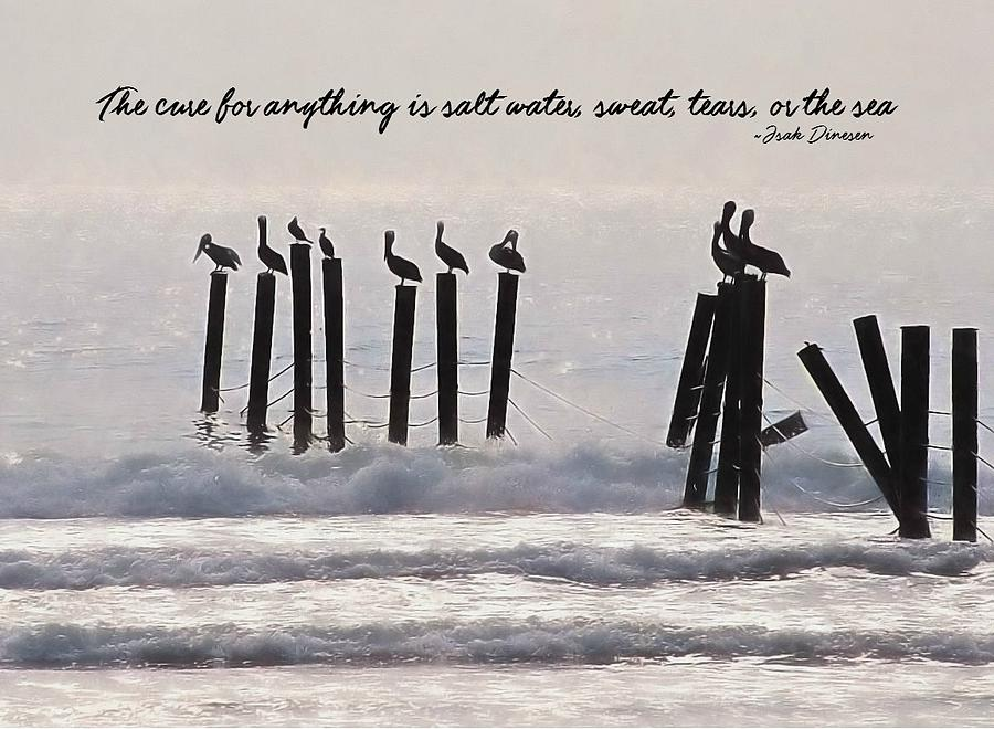 Beach Photograph - Pelicans Perched Quote by JAMART Photography