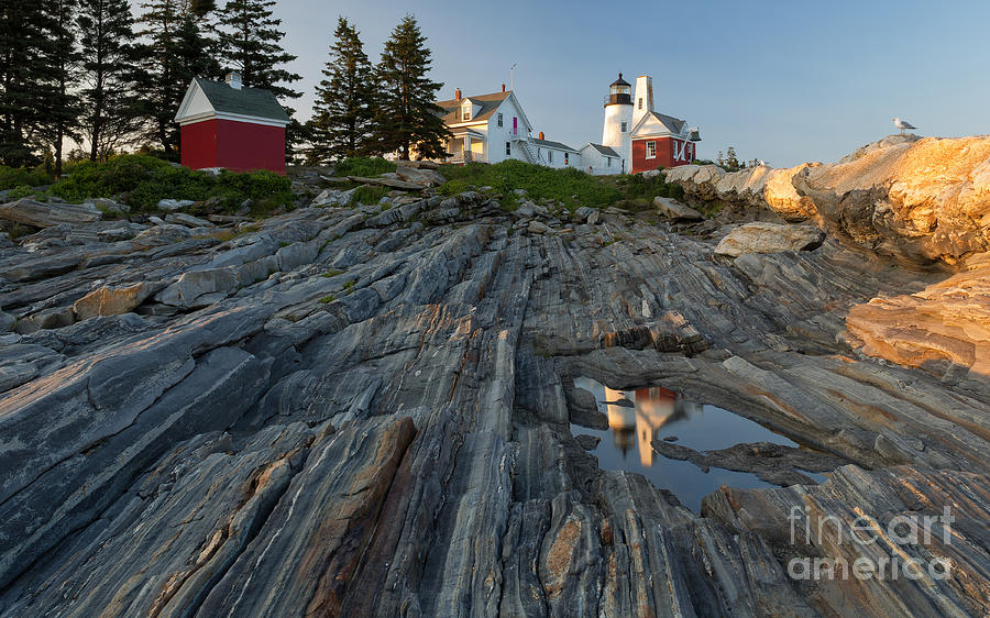 Joshua Clark Photograph - Pemaquid Point Light by Joshua Clark