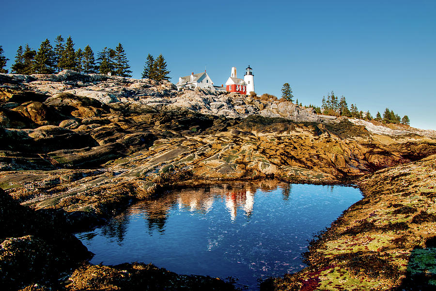 Pemaquid Lighthouse Photograph - Pemaquid Reflection by Greg Fortier