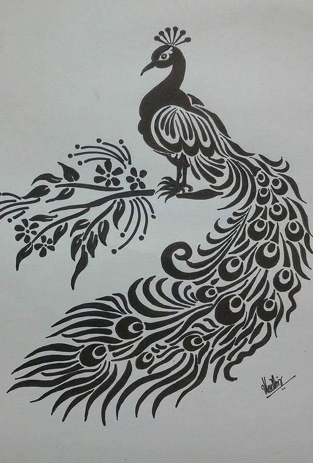 Peacock drawing pencil sketch of peacock by kanaga rajesh