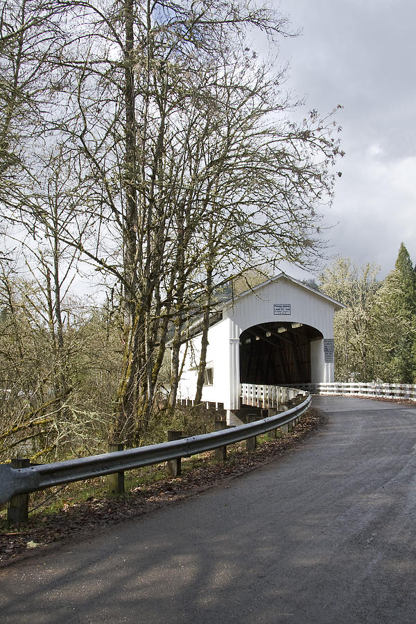 Pengra Covered Bridge Photograph by John Higby
