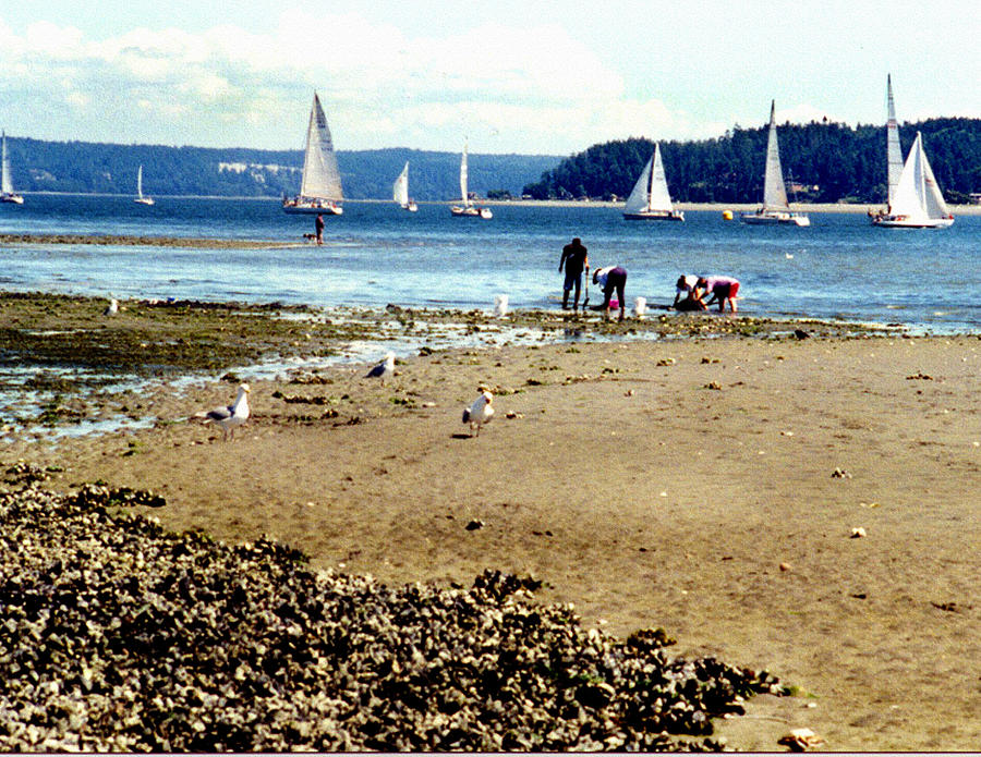 Landscape Photograph - Penn Cove Clamming by Valerie  Moore