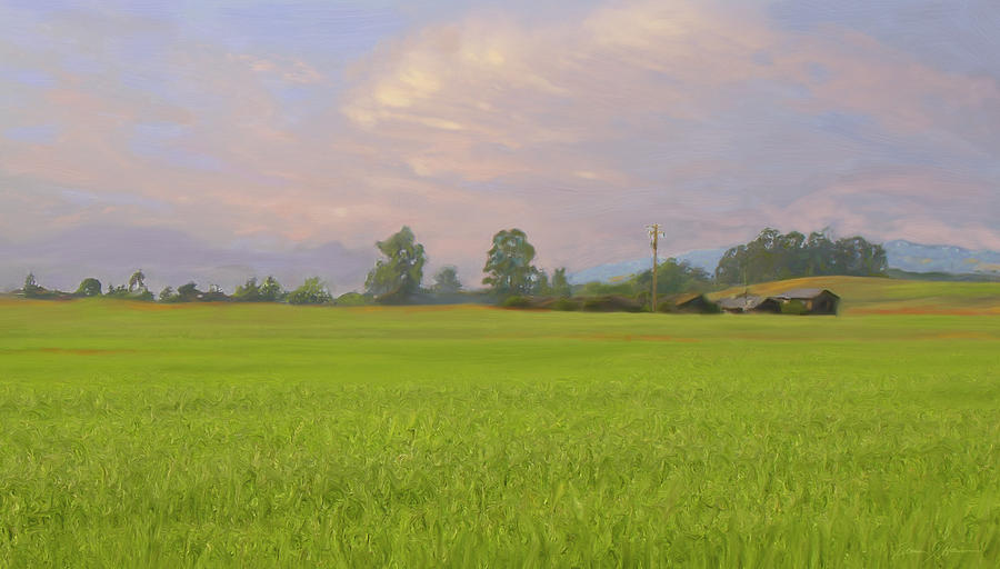 Landscape Painting - Penngrove Field by Thomas  Hansen