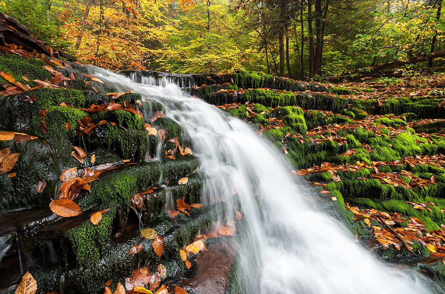 Allegheny Mountains Photograph - Pennsylvania Autumn Ricketts Glen State Park Waterfall by Mark VanDyke
