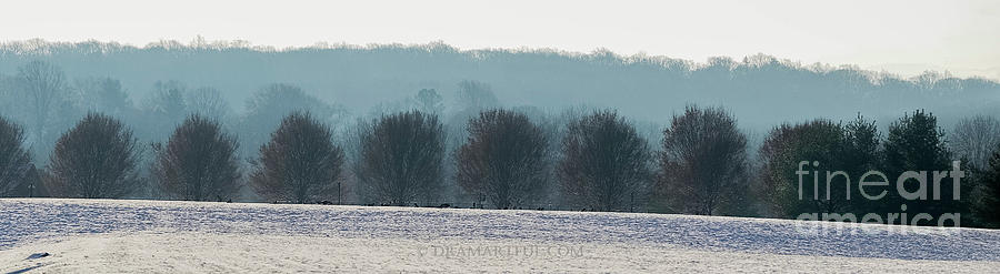 North America Photograph - Pennsylvania Winter by Maria Costello
