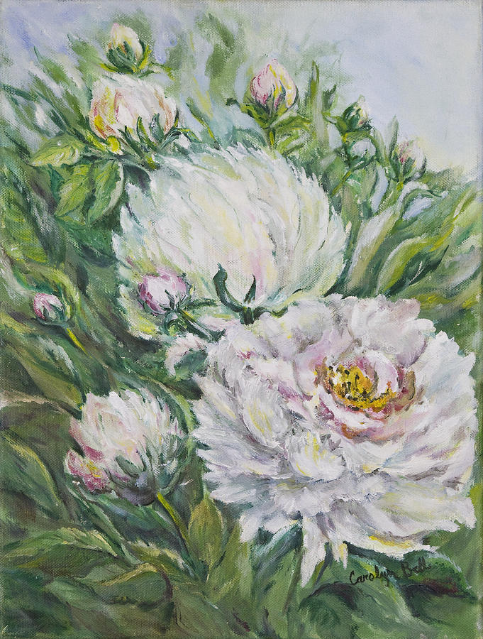 Peony Painting - Peony by Carolyn Bell