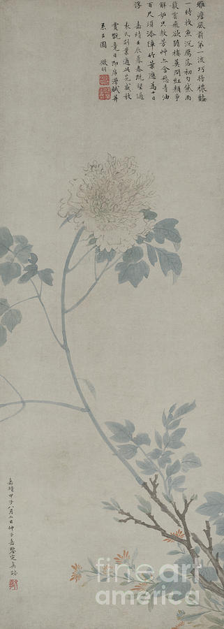 Peony Painting - Peony, Hanging Scroll, 1532 by Wen Zhengming