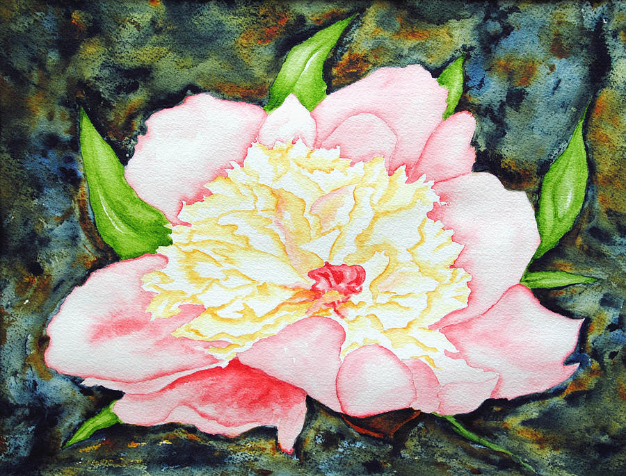 Flower Painting - Peony by Vallee Johnson