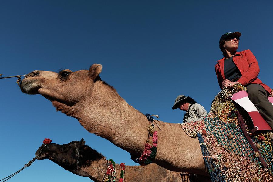 People on the Camel, Pushkar by Mahesh Balasubramanian