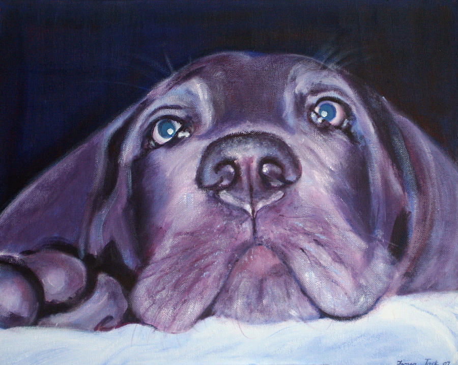 Portrait Painting - Pepper by Fiona Jack