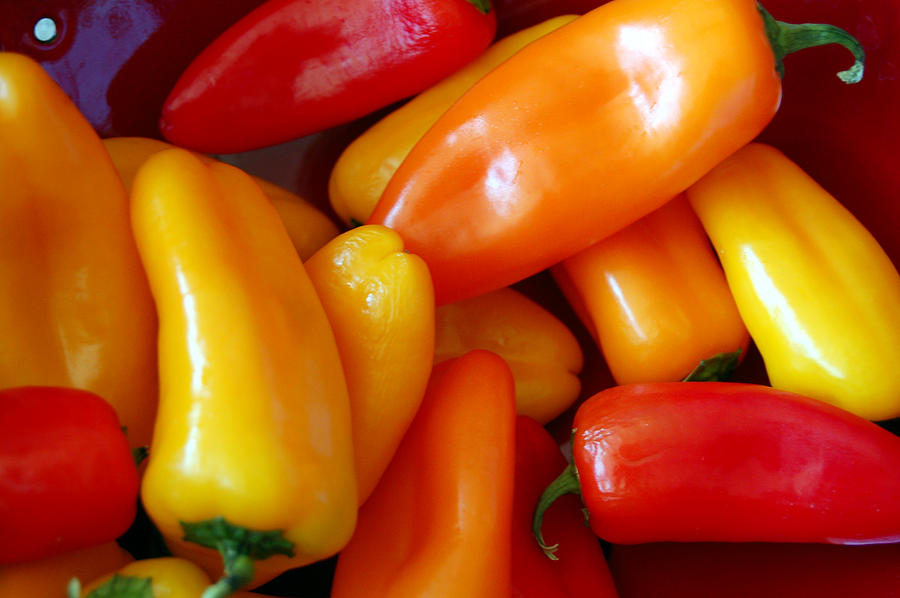 Peppers Photograph - Pepper Medley by Heather S Huston
