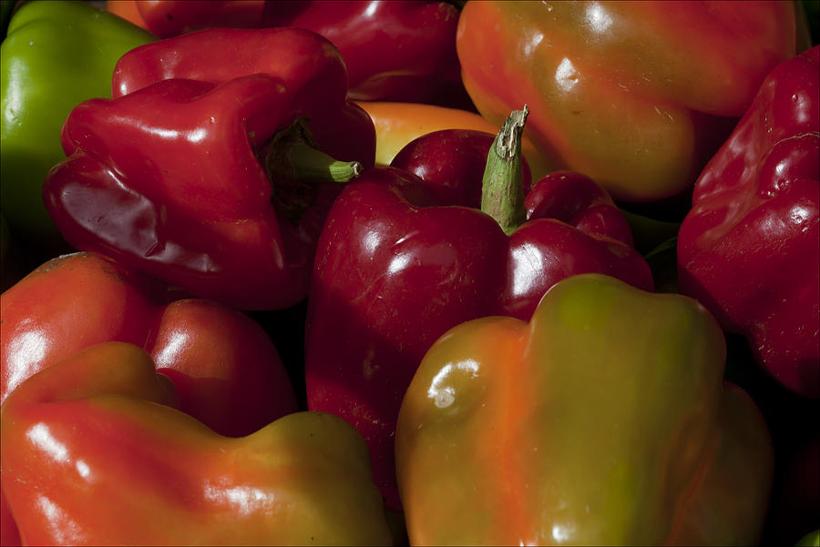 Peppers Photograph - Peppers In The Late Afternoon by Robert Ullmann