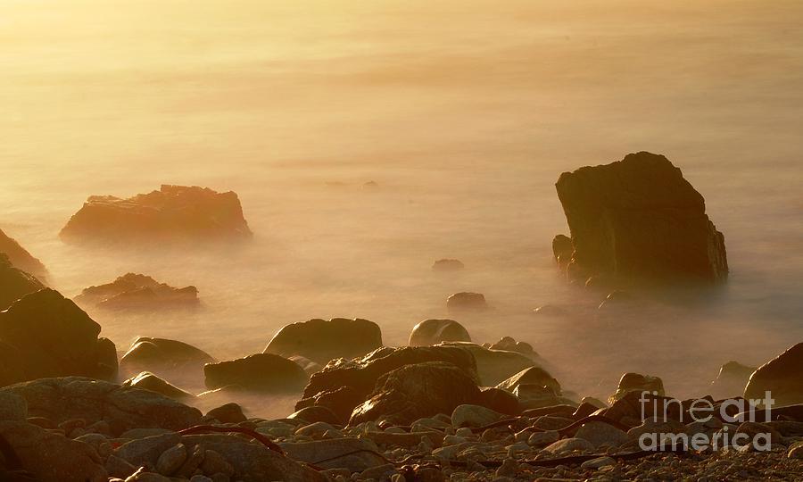 Rock Photograph - Pepple Beach by Catherine Lau