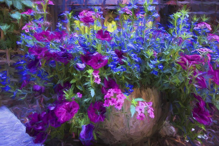 Perennials Photograph - Perennial Flowers Y2 by Carlos Diaz