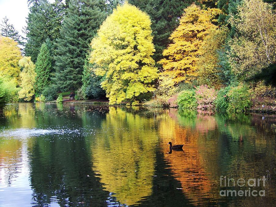 Perfect Autumn Day by Julie Rauscher