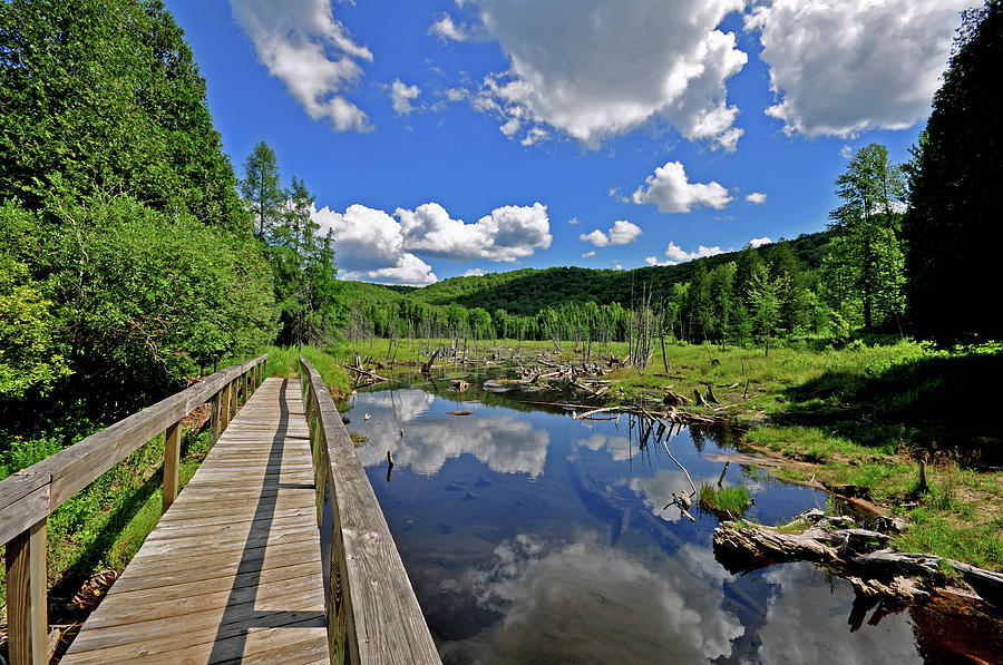 Michigan Hiking Photograph - Perfect Day by Russell Todd
