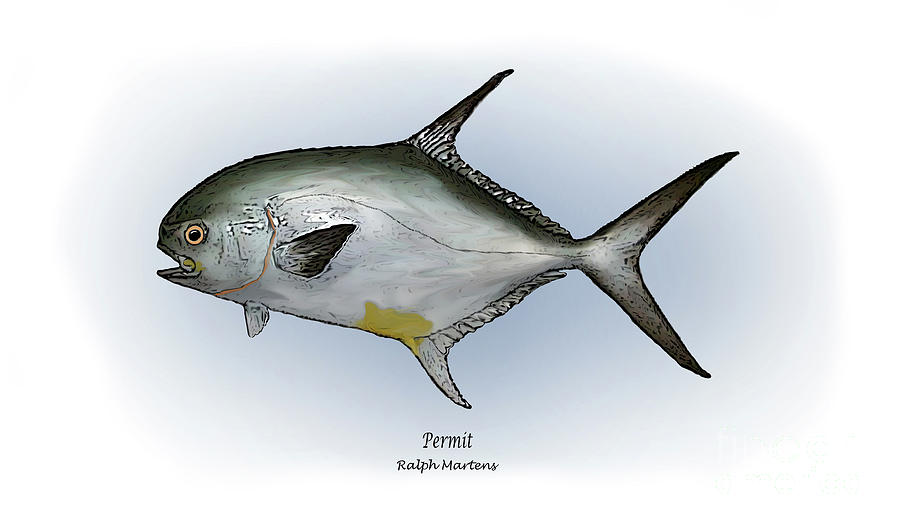Permit Painting - Permit by Ralph Martens