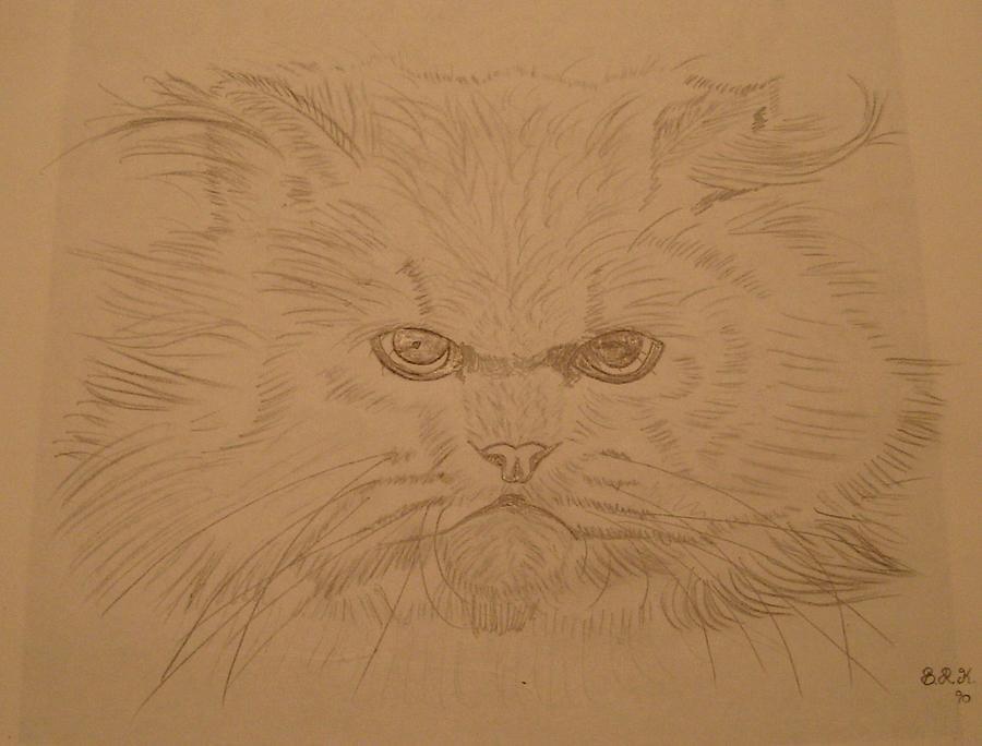 Cat Painting - Persian Cat 4 by Bo Klinge