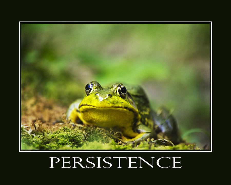Persistence Photograph - Persistence Inspirational Motivational Poster Art by Christina Rollo