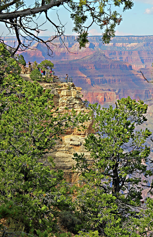 Travel Photograph - Perspective Of Grand Canyon by Linda Phelps