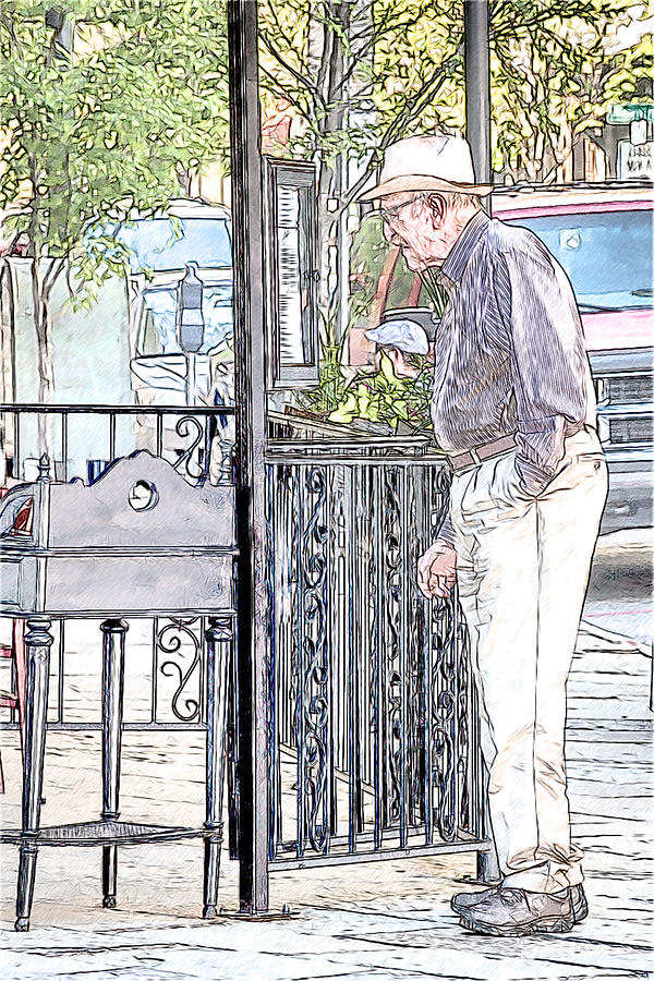 Old Man Photograph - Perusing The Menu by John Haldane