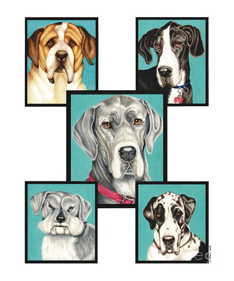 Dog Drawing - Pet Memorial by Sheryl Unwin