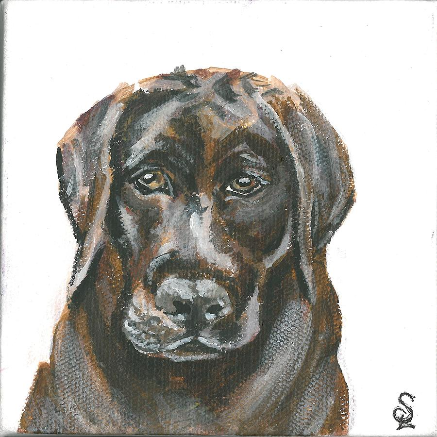 Pet Portrait - Choc Lab by Sarah Lowe