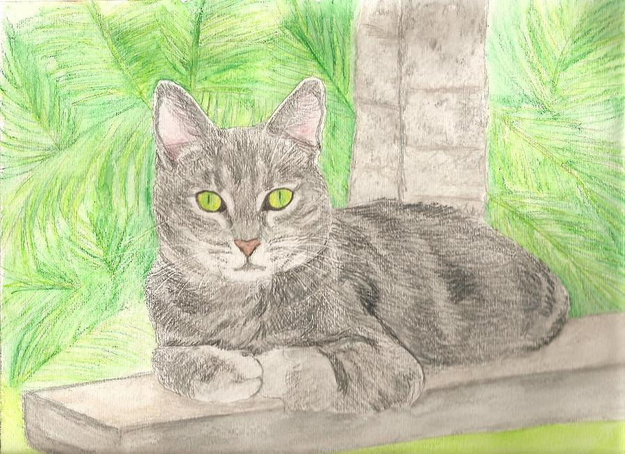Cat Painting - Pet Portrait Original Watercolor By Pigatopia by Shannon Ivins