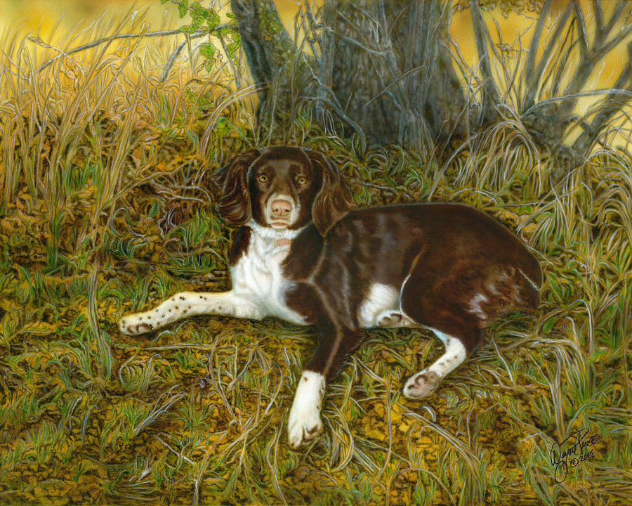 Pet Portrait - Springer Spaniel, Milly Painting by Wayne Pruse