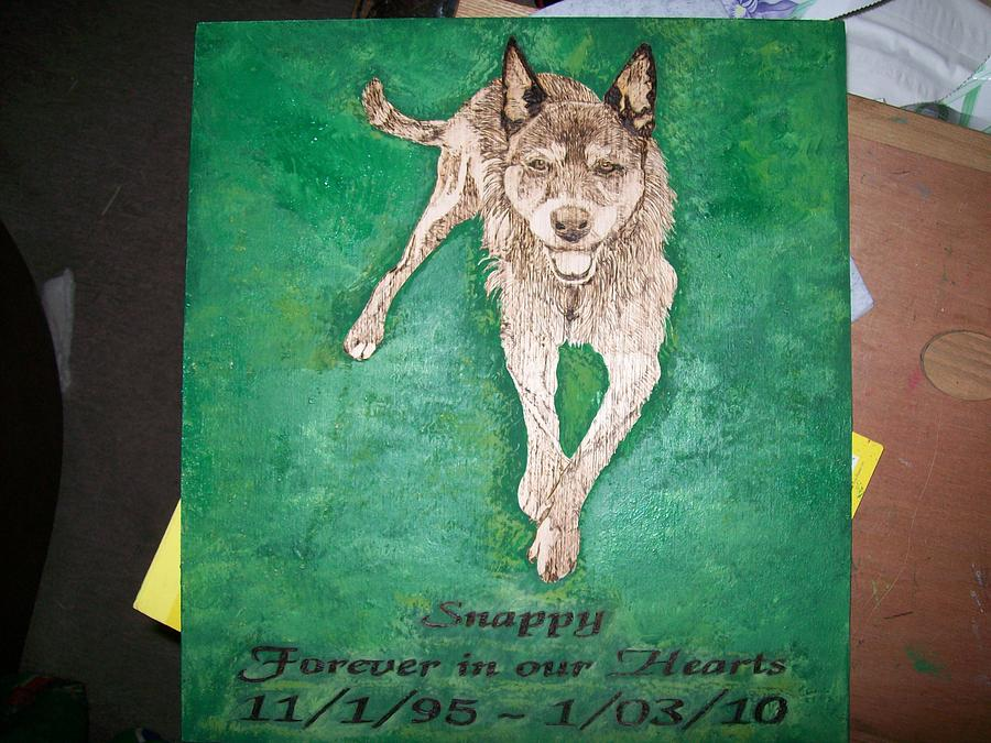 Pet Pyrography - Pet Portrait Wood Burn Wall Plaque U Provide Picture By Pigatopia by Shannon Ivins