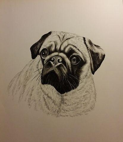 Pet Painting - Pet by Yihua Shen